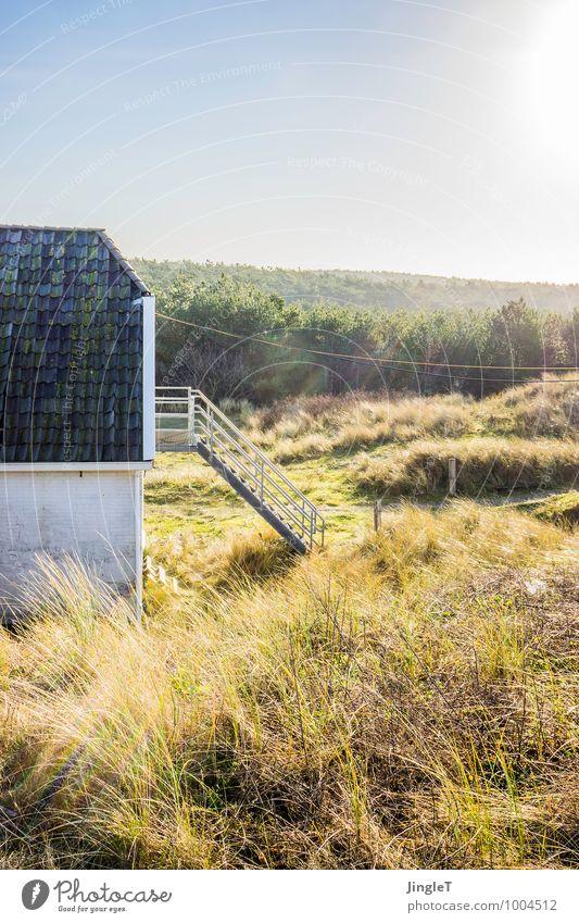 the rope Umwelt Natur Landschaft Pflanze Himmel Winter Schönes Wetter Baum Gras Sträucher Wiese Wald Haus Hütte Bauwerk Außentreppe Dach wandern authentisch