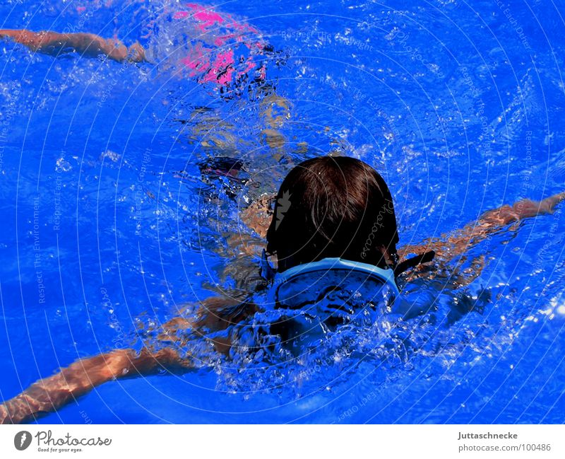 The Diver blau Sommer Freude Sport Spielen Schwimmbad tauchen Taucher