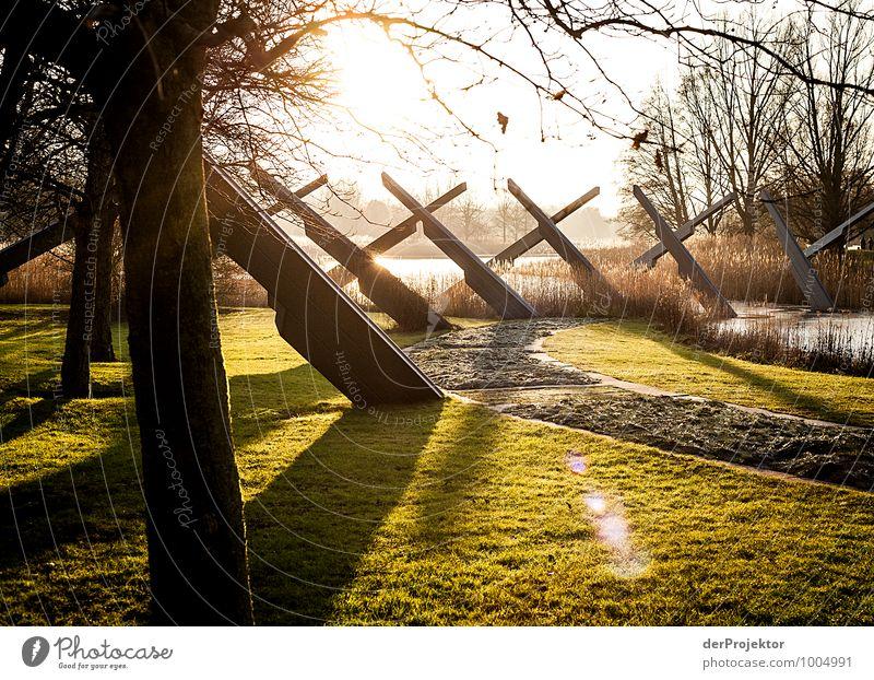 Da mache ich mal mehr als drei Kreuze Ferien & Urlaub & Reisen Pflanze Baum Landschaft Freude Winter Umwelt Gefühle Wege & Pfade Berlin Glück Garten Stimmung