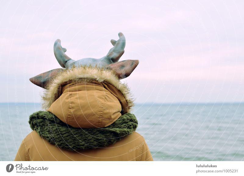 das ist ein rentier. Mensch Himmel Natur Meer Tier Ferne Kopf nachdenklich frei Aussicht beobachten Ohr Gelassenheit Jacke tierisch Maske