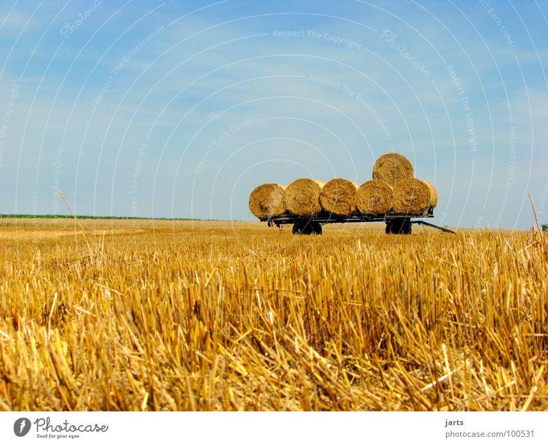 """""""6"""" Heuballen Strohballen Feld Kornfeld Landwirtschaft Arbeit & Erwerbstätigkeit Feierabend Biologische Landwirtschaft Sommer Verkehr Ernte Gedreide Amerika"""