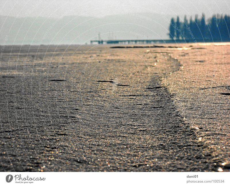 Eiswelt am Bodensee Wasser Winter Schnee Eis Stimmung Spuren Steg Furche Bodensee