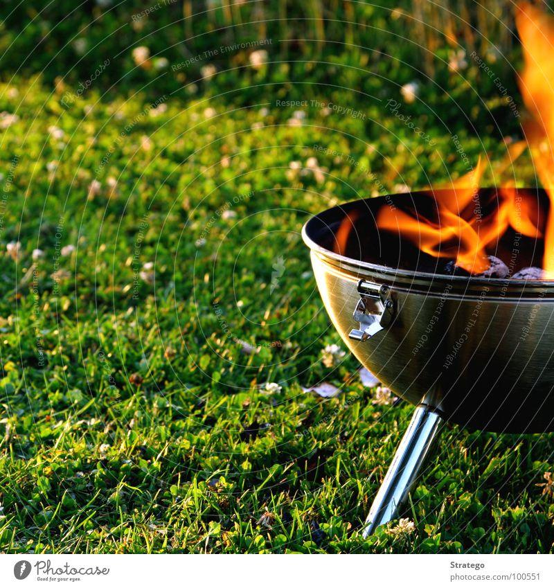 Ne Wurscht grillieren... grün Sommer Wiese Wärme Gras Holz See Brand Ernährung Feuer Physik heiß Kugel Abendessen Flamme Grill