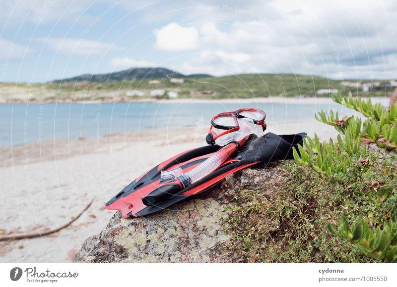 Abtauchen Natur Ferien & Urlaub & Reisen Sommer Erholung Meer Landschaft ruhig Ferne Strand Leben Küste Freiheit Schwimmen & Baden Lifestyle Horizont träumen