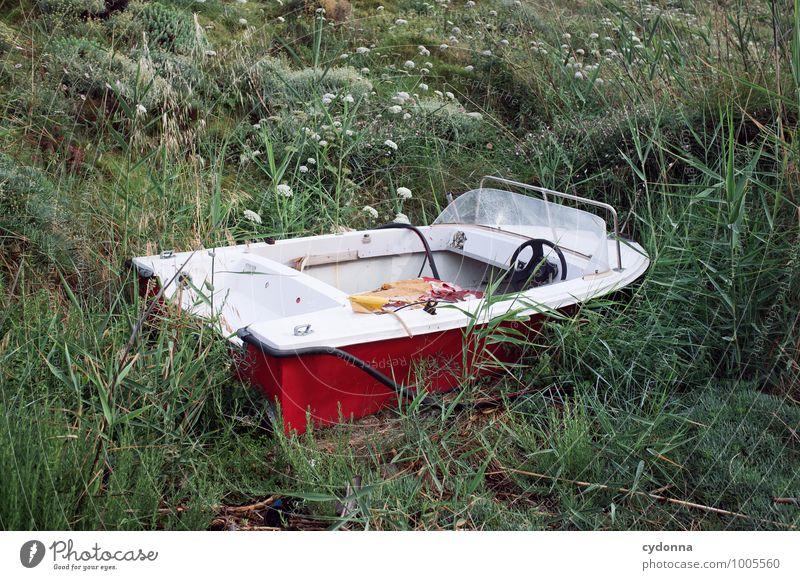Strandgut Ferien & Urlaub & Reisen Ausflug Abenteuer Sommerurlaub Umwelt Natur Wiese Küste Meer Schifffahrt Sportboot Motorboot Einsamkeit entdecken