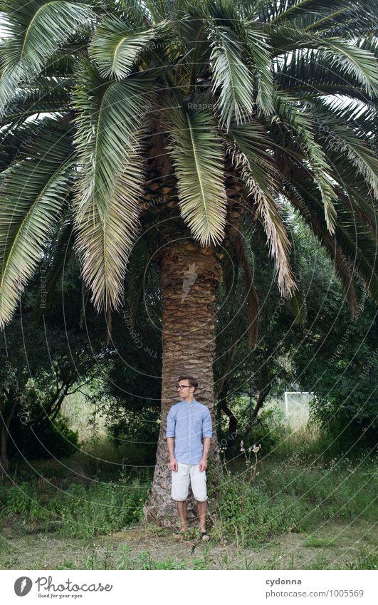 Schattenspender - Südländisch Mensch Natur Ferien & Urlaub & Reisen Jugendliche Sommer Baum Erholung Junger Mann ruhig 18-30 Jahre Erwachsene Leben Gefühle Stil Freiheit träumen