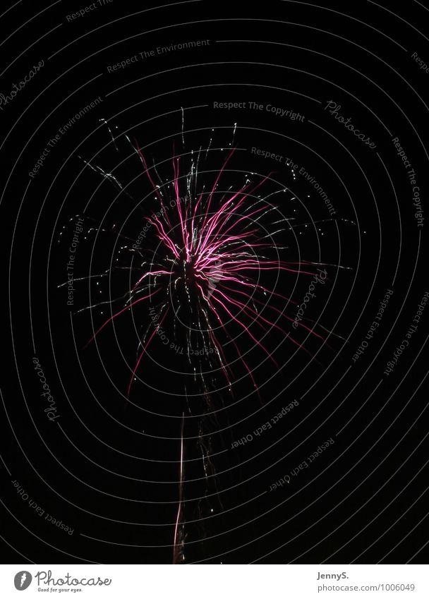 Lila Erlebnis Silvester u. Neujahr Veranstaltung leuchten Fröhlichkeit Unendlichkeit schön violett rosa schwarz weiß Hoffnung Überraschung Farbe Vergänglichkeit
