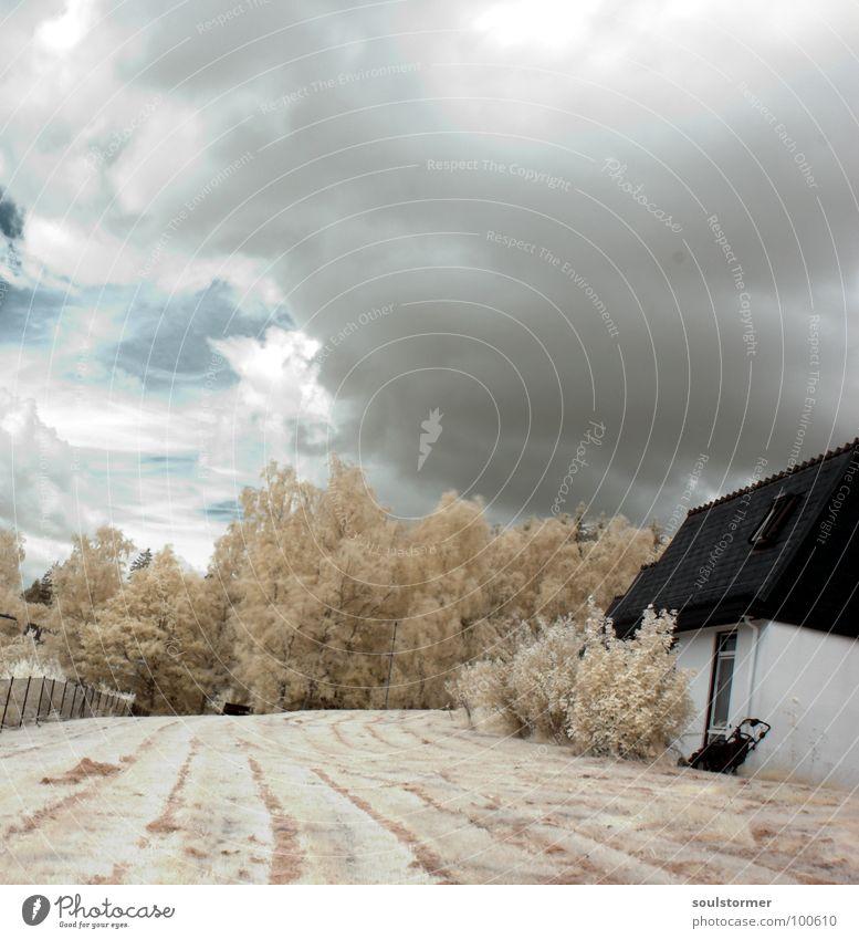 Bild No. 100 - My home... schön Himmel weiß Baum blau Freude ruhig Haus schwarz Wolken Wiese Wand Gras grau Wohnung modern