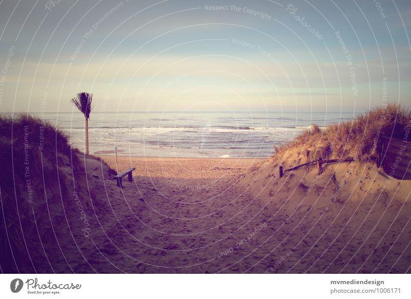 Sylter Einsamkeit Natur Landschaft Pflanze Tier Sand Luft Wasser Winter Schönes Wetter Wind Sturm Wellen Küste Strand Nordsee Insel beobachten Denken entdecken