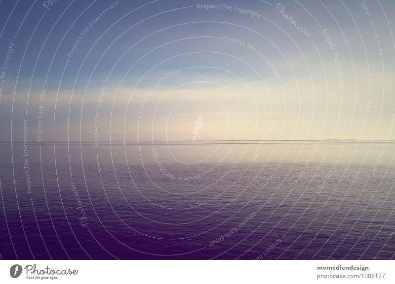 Ruhe vor dem Sturm Umwelt Natur Landschaft Pflanze Tier Urelemente Luft Wasser Himmel Wolken Winter Schönes Wetter Küste Nordsee Insel Sylt Menschenleer atmen
