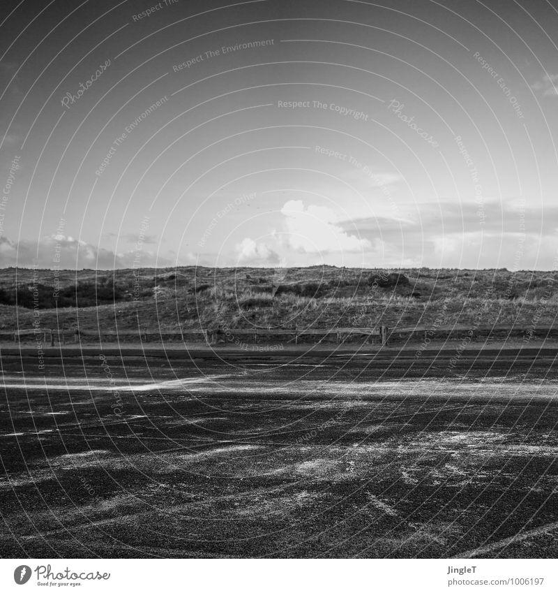 Tschüss, liebe Anne! | Der Horizont ist keine Grenze Umwelt Natur Landschaft Pflanze Erde Himmel Winter Schönes Wetter Gras Küste Strand Nordsee Denken Erholung
