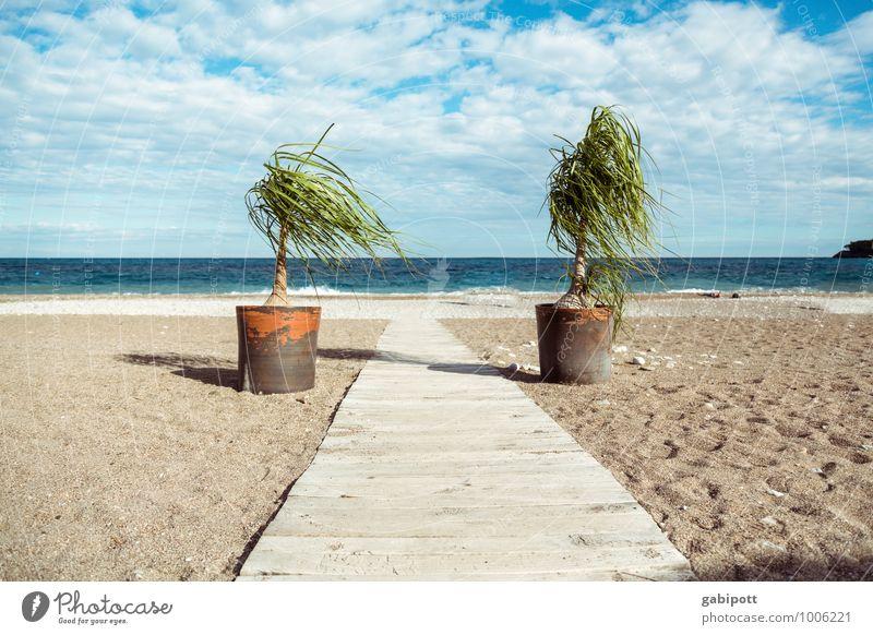 ab in den urlaub Himmel Natur Ferien & Urlaub & Reisen blau Pflanze Wasser Sommer Sonne Erholung Meer Landschaft ruhig Strand Ferne Küste Sand