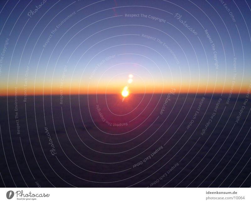Sonnenaufgang Himmel Flugzeug fliegen Luftverkehr