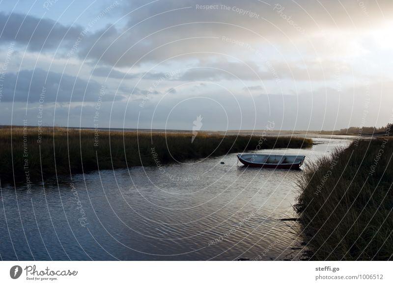 Einsamkeit Ferien & Urlaub & Reisen Ausflug Abenteuer Ferne Freiheit Meer Insel Wellen Landschaft Wolken Horizont Sträucher Küste Seeufer Flussufer Bucht Fjord