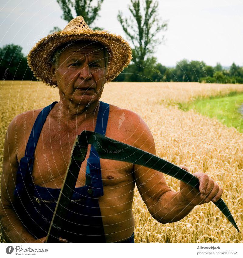 Der Sensenmann Feld Landwirtschaft Großvater Mann braun Sonnenbad Leder Scharfrichter Abschlag Weizen Latzhose alt Strohhut Handwerk Senior Sommer Tod