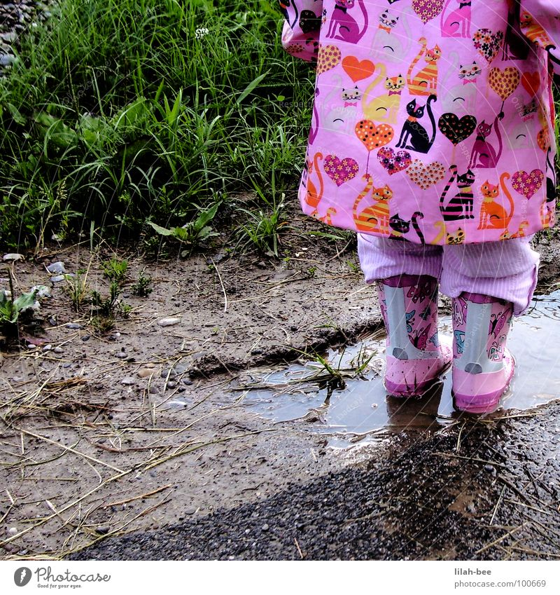 plitsch platsch Katze Natur Wasser Mädchen Freude Gras Regen Herz dreckig Bodenbelag Kind Kleinkind Stiefel Schlamm Gummistiefel Regenbekleidung
