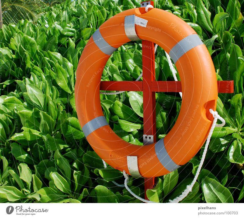Strandschwimmer II Sommer Seil Sträucher grün Hilfsbereitschaft Rettung Mittag orange Kreis Farbfoto mehrfarbig nützlich Lebensrettung kreisrund Sicherheit