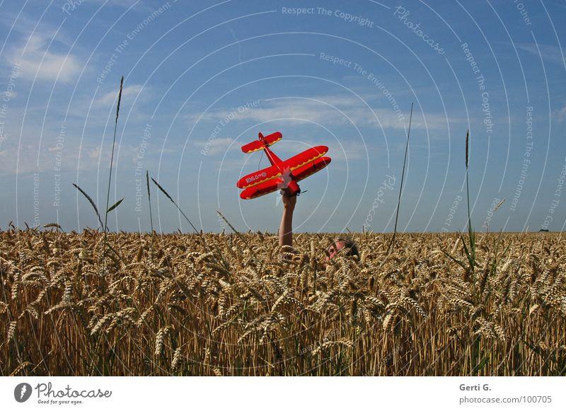 midair Flugzeug Modellflugzeug Kornfeld rot Hand verdeckt unsichtbar Tarnung Fluggerät Oberkörper Weizen niedlich Weizenfeld Gras tauchen Modellbau Spannweite
