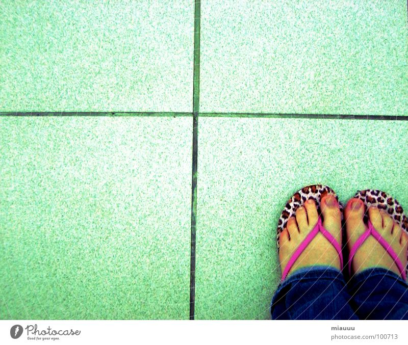 flip flop füße schön Einsamkeit Fuß Rücken obskur Katze Leopard Flipflops