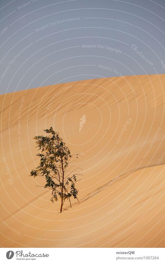 Überlebenskünstler III Umwelt Natur Landschaft Klima Klimawandel Schönes Wetter ästhetisch Wüste Düne Wachstum Sträucher Monopol Überlebenskampf