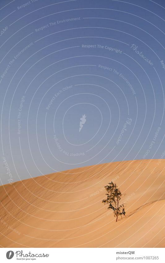 Überlebenskünstler II Kunst ästhetisch Zufriedenheit Wüste Wüstenpflanze Sand Düne Wärme Überlebenskampf Überlebenstraining Blauer Himmel Sommer Sahara