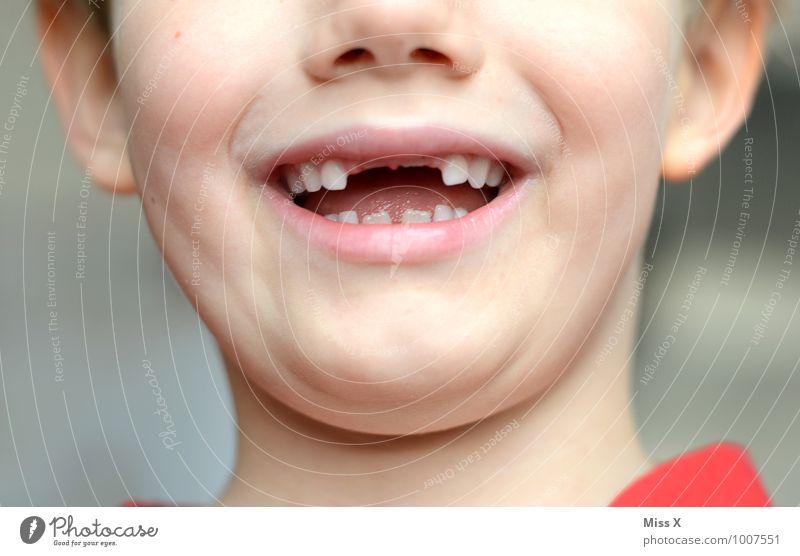 Mut zur Lücke Mensch maskulin Kind Kleinkind Junge Kindheit Mund Zähne 1 3-8 Jahre Zahnlücke Zahnarzt Zahnpflege Zahnschmerzen Wachstum Vampir beißen Farbfoto