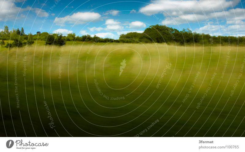 speed Himmel grün Baum Ferien & Urlaub & Reisen Sommer Freude Wolken gelb Landschaft Straße Freiheit Bewegung Gras Frühling Horizont Kraft