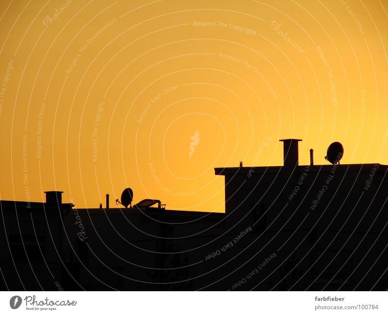 Kingsville on Fire Himmel Sommer ruhig Haus schwarz gold Dach Schönes Wetter Schornstein Abenddämmerung Einfamilienhaus Wolkenloser Himmel Satellitenantenne