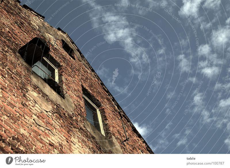 blühende landschaften Himmel alt Haus Fenster Gebäude Deutschland Arme leer Armut Vergänglichkeit verfallen Backstein schäbig Gesellschaft (Soziologie) Wohnzimmer Fensterscheibe