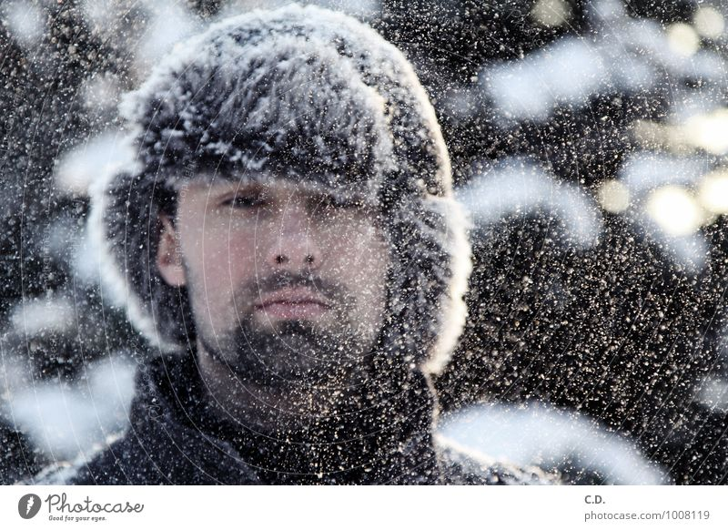 Jan Mensch Jugendliche Junger Mann 18-30 Jahre Winter kalt Erwachsene Schnee Kopf Schneefall beobachten Fell Bart Mütze Schneeflocke Dreitagebart