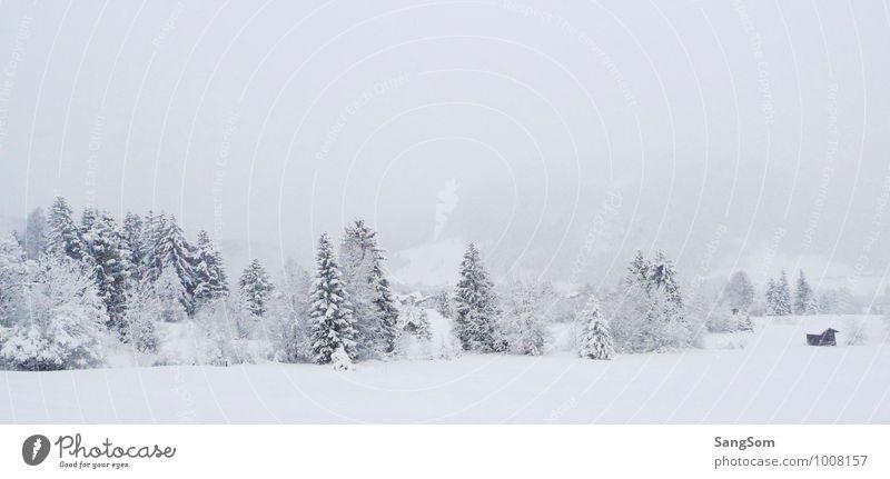 Winterlandschaft Schnee Winterurlaub Natur Landschaft Himmel Wolken Schönes Wetter Schneefall Baum Wald Hügel Berge u. Gebirge Hütte weiß Lebensfreude ruhig