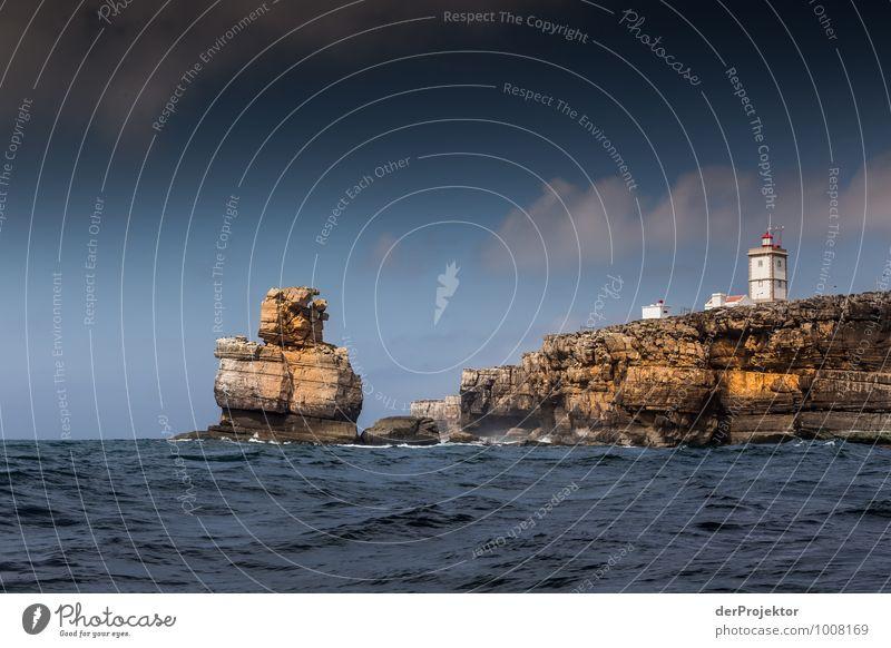 """""""Das Ding"""" kommt aus dem Wasser Natur Ferien & Urlaub & Reisen Pflanze Sommer Meer Landschaft Tier Umwelt Gefühle Küste Felsen Wellen Tourismus Insel Ausflug"""