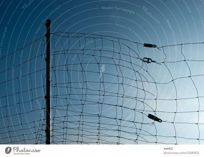 Gespinst Wolkenloser Himmel Metall Kunststoff dünn blau Fürsorge Kontrolle Netzwerk Sicherheit beweglich Begrenzung Barriere Zaun eng Maschendrahtzaun Klammer