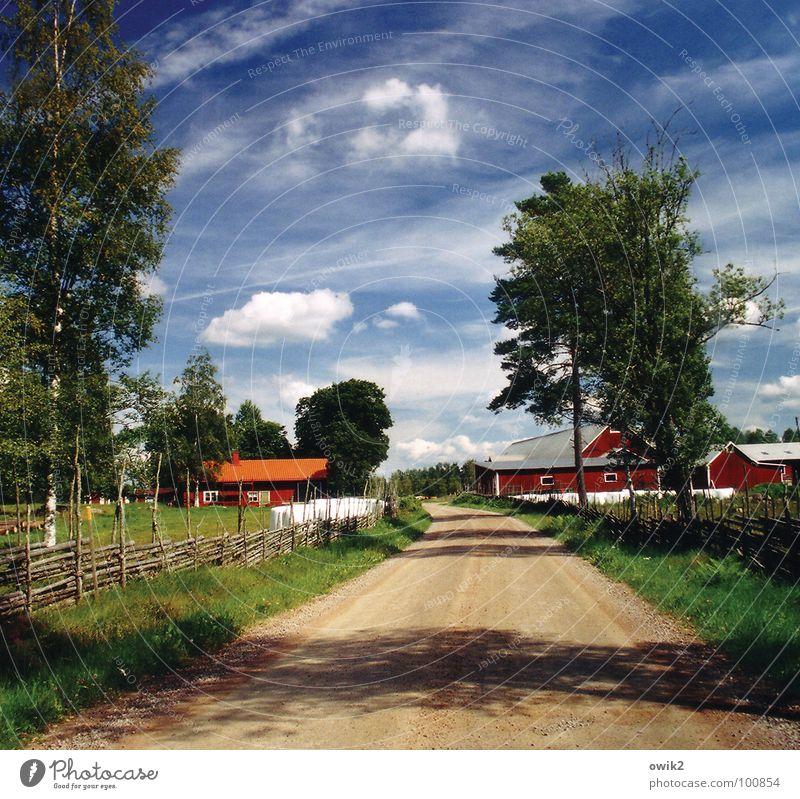 Hinterland Himmel Natur Pflanze Baum Landschaft Wolken Haus Umwelt Erde Verkehr Idylle Klima Schönes Wetter Zaun Dorf Bauernhof