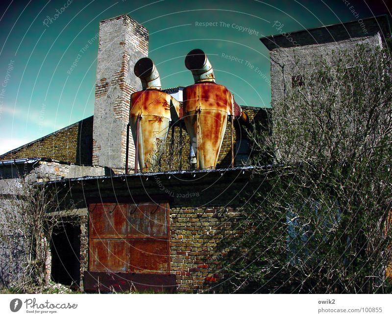 Brüder, zum Lichte empor Landwirtschaft Forstwirtschaft Technik & Technologie Himmel Pflanze Sträucher Ruine Bauwerk Gebäude Architektur Mauer Wand Schornstein
