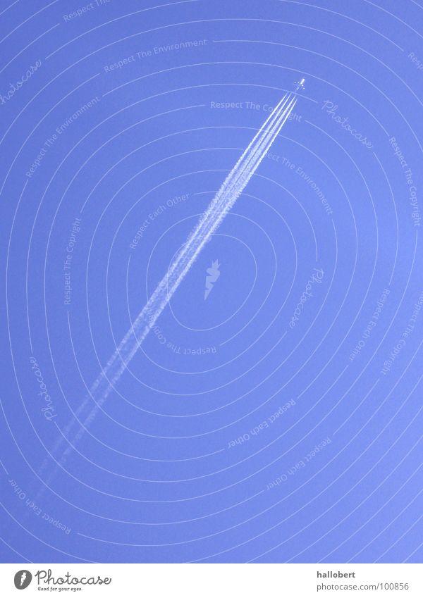 Urlaubs Flieger 01 Flugzeug Düsenflugzeug Passagierflugzeug Kondensstreifen Schwanz Flughafen flieger am himmel Blauer Himmel