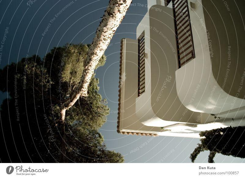Schattengewächshaus Himmel weiß Baum Sommer Ferien & Urlaub & Reisen Haus Wand Freiheit Stein Wärme verrückt Wachstum rund Physik
