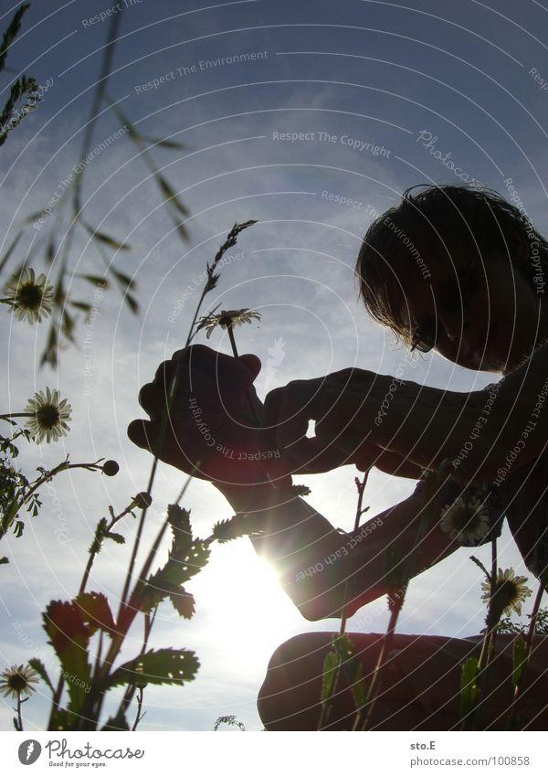 auslese Mensch i Park Wiese Sträucher Blume Gras Halm Wolken blenden gepflückt Sonnenbrille Freizeit & Hobby Osten Himmel personenfoto selbstportait ich myself