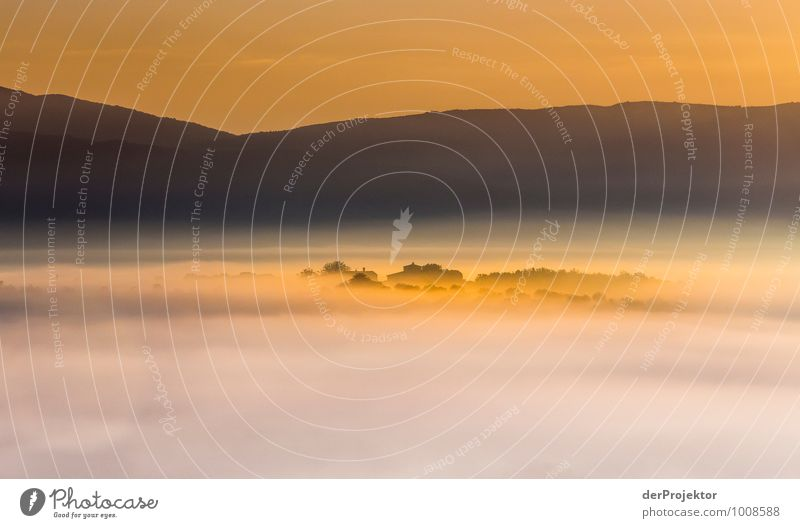 Insel im Nebelmeer Natur Ferien & Urlaub & Reisen Pflanze Sommer Meer Landschaft Ferne Umwelt Berge u. Gebirge Gefühle Wiese Freiheit Feld Tourismus Orange
