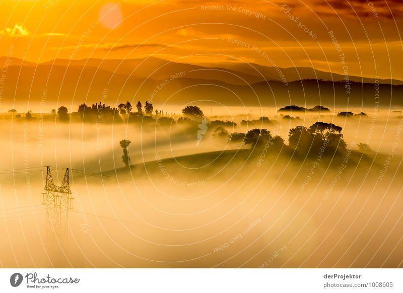 Morgens um 6 Uhr in der Toskana Natur Ferien & Urlaub & Reisen Pflanze Sommer Landschaft Wolken Freude Ferne Umwelt Berge u. Gebirge Gefühle Glück Freiheit