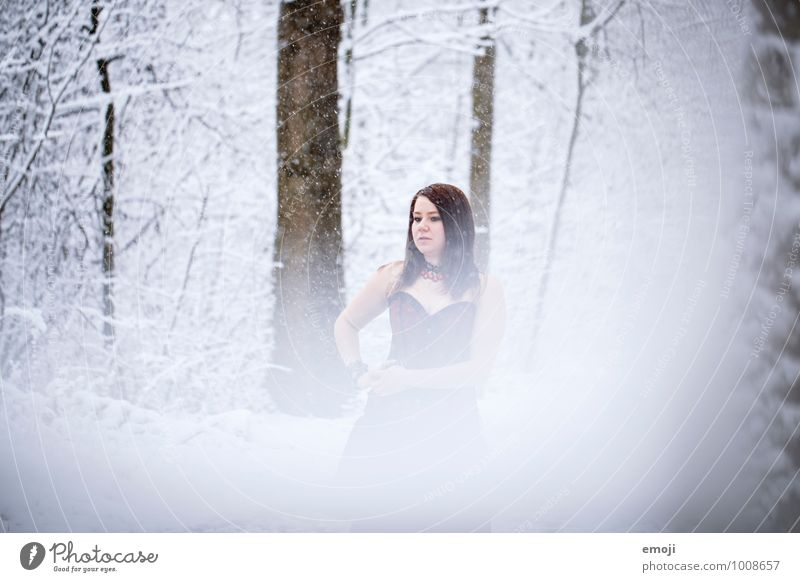Schnee feminin Junge Frau Jugendliche 1 Mensch 18-30 Jahre Erwachsene Umwelt Natur Winter Schneefall Wald kalt weiß Farbfoto Außenaufnahme Tag