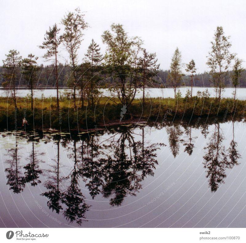 Tiveden Himmel Natur Pflanze Wasser Baum Erholung Landschaft Wolken ruhig Ferne Umwelt See Horizont Idylle Sträucher groß