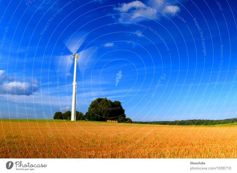 Windenergie Landwirtschaft Forstwirtschaft Industrie Technik & Technologie Fortschritt Zukunft Energiewirtschaft Windkraftanlage Landschaft Wolken Horizont
