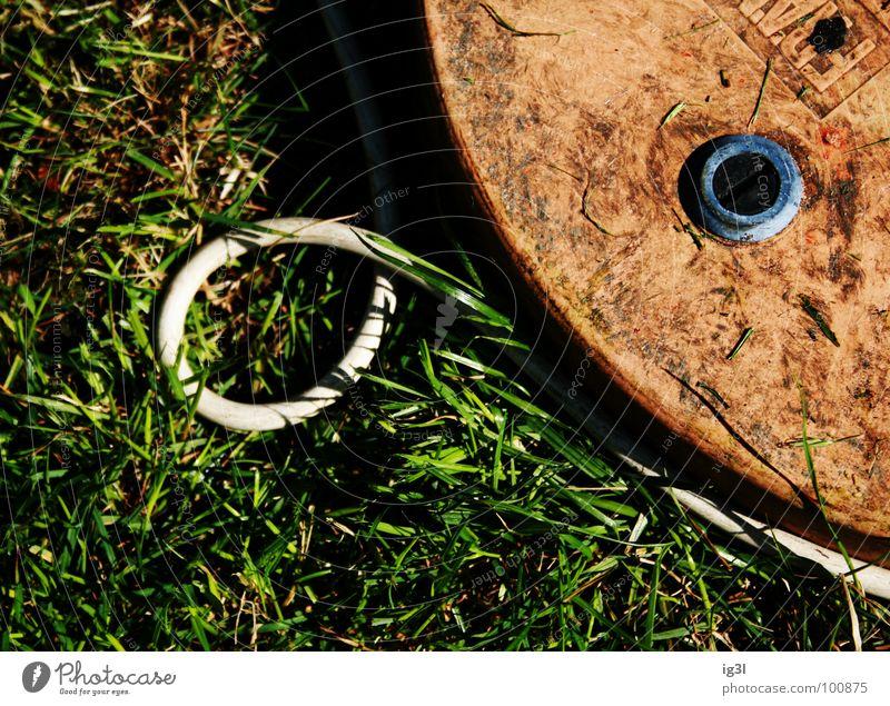 kurvenkind °'° umwege sind reizvoll Natur weiß grün Sommer Freude ruhig Wiese Gras Garten orange dreckig Kreis Elektrizität Pause rund Kabel