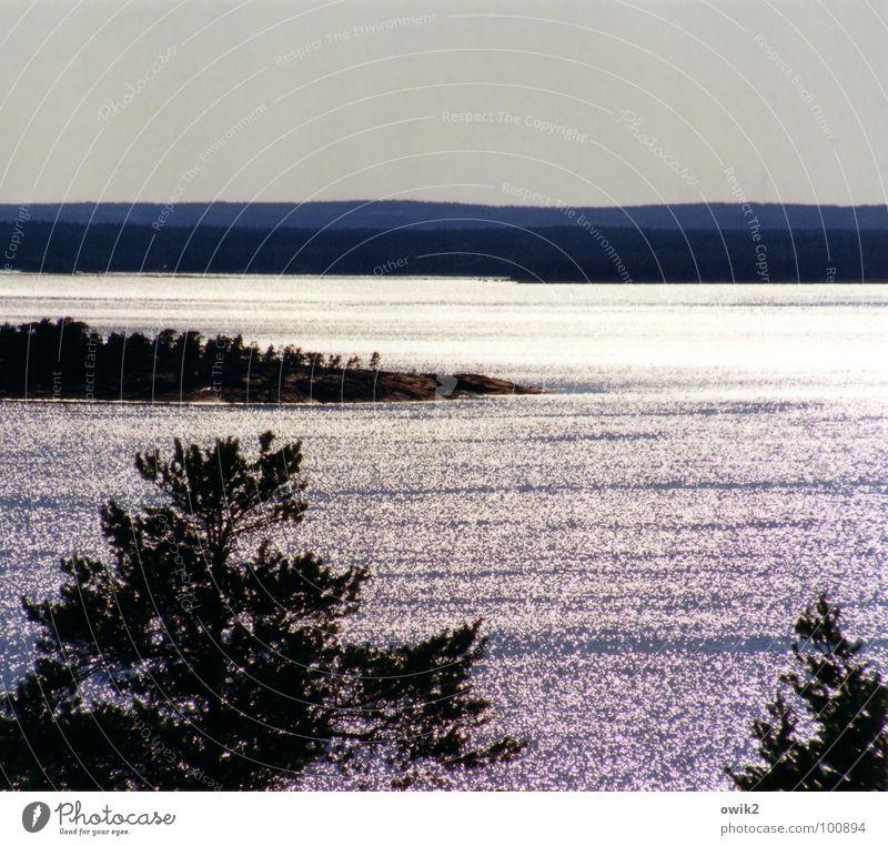 Schwedische Traumreise Natur Pflanze Wasser Sonne Baum Meer Landschaft Ferne Wald Umwelt Küste hell Horizont glänzend Wetter leuchten