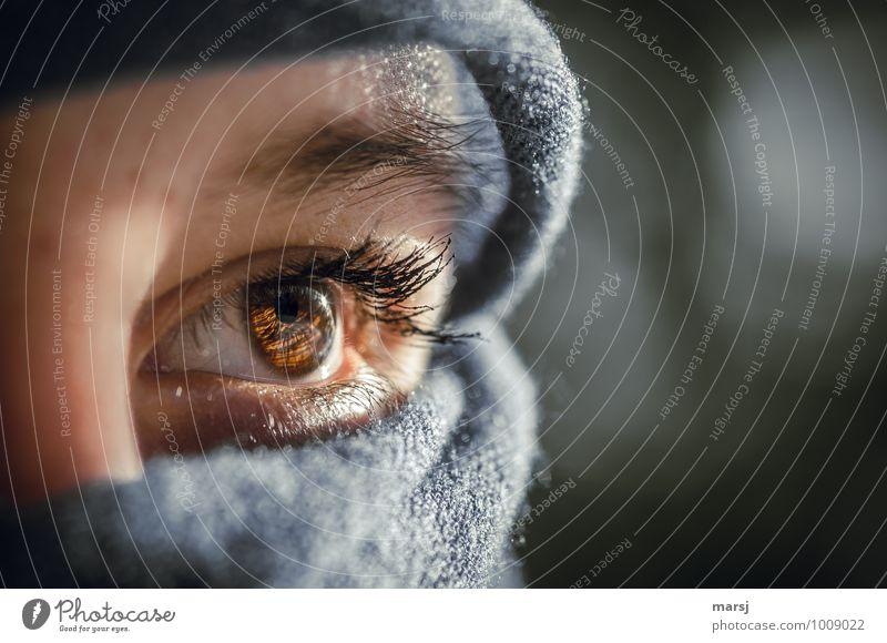 Augenblick Mensch feminin Junge Frau Jugendliche Wimpern Augenbraue 1 13-18 Jahre Kind Bekleidung Kopftuch beobachten leuchten Blick träumen ästhetisch