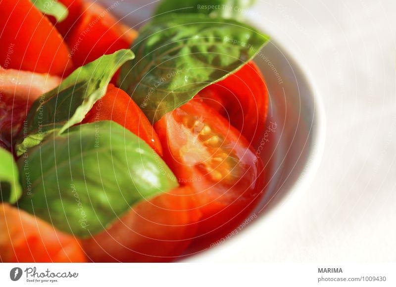 detail of tomato-basil salad Natur grün rot Blatt kalt Umwelt Liebe Lebensmittel frisch Ernährung Gemüse Gastronomie lecker reif Teller Tomate