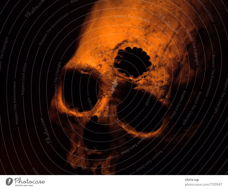 Schädeloperation Peru alt schwarz dunkel Tod Kopf außergewöhnlich gruselig Loch obskur Südamerika Wunde unheimlich Stirn Operation Anatomie