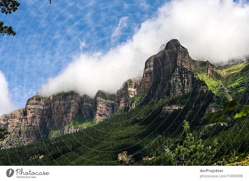 Wolkenkratzer Natur Ferien & Urlaub & Reisen Pflanze Sommer Landschaft Ferne Umwelt Berge u. Gebirge Gefühle Freiheit Felsen Freizeit & Hobby Tourismus wandern