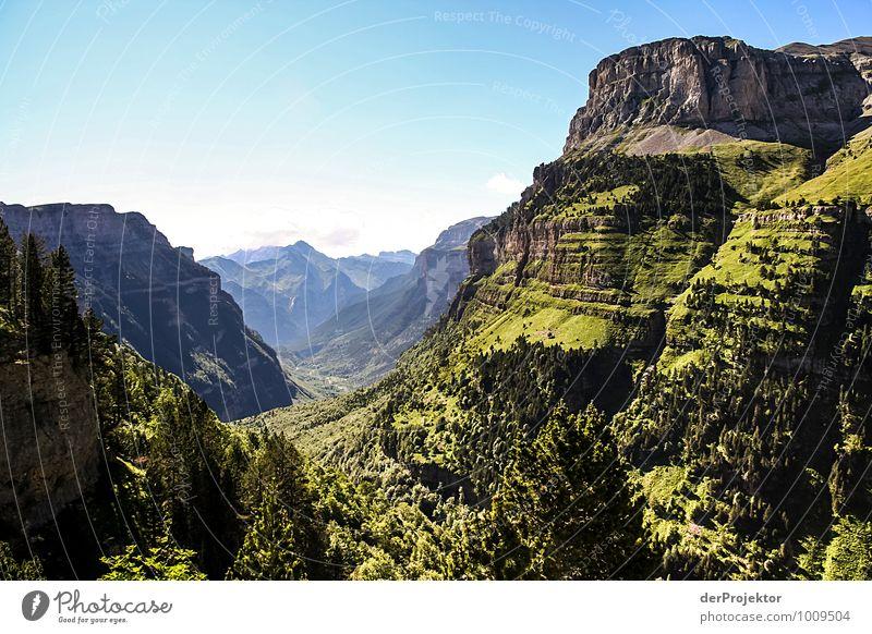 Vallée de Cauterets Natur Ferien & Urlaub & Reisen Pflanze Sommer Baum Blume Landschaft Freude Ferne Umwelt Berge u. Gebirge Gefühle Wiese Freiheit Felsen
